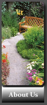 Garden Maintenance by Dublin Gardens, The experienced gardener in South Dublin