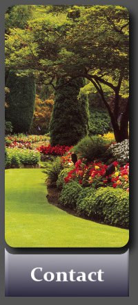 Dublin Gardens - Garden Maintenance and Landscape Gardening by an experienced gardener
